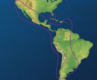Direct TV Latin America North America Coverage | Raymarine